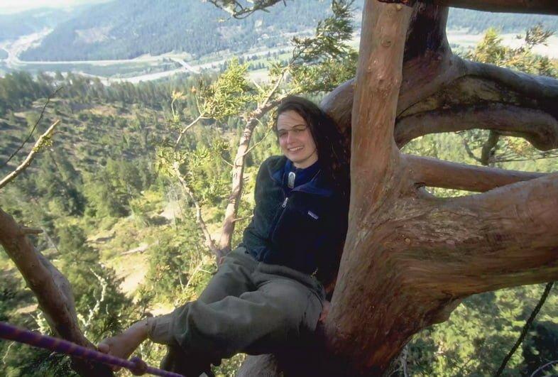 Джулия Хилл на дереве, на котором она провела пять месяцев.