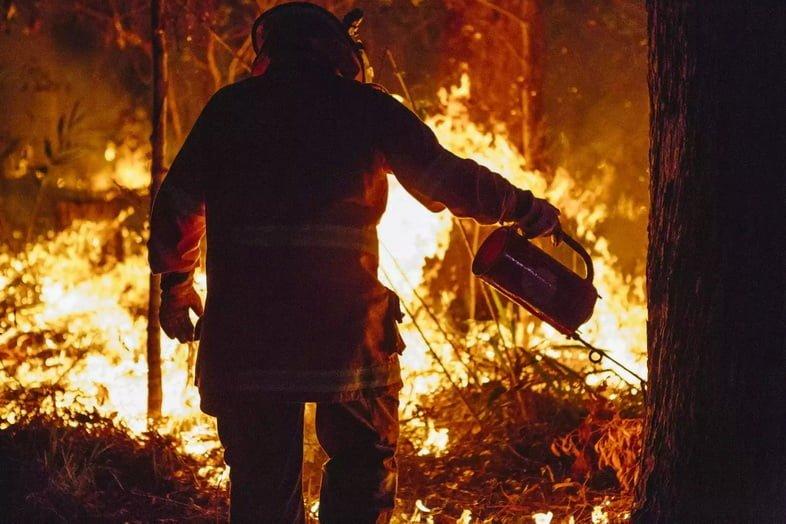 Пожарный, проводящий контролируемый пожар с капельной горелкой