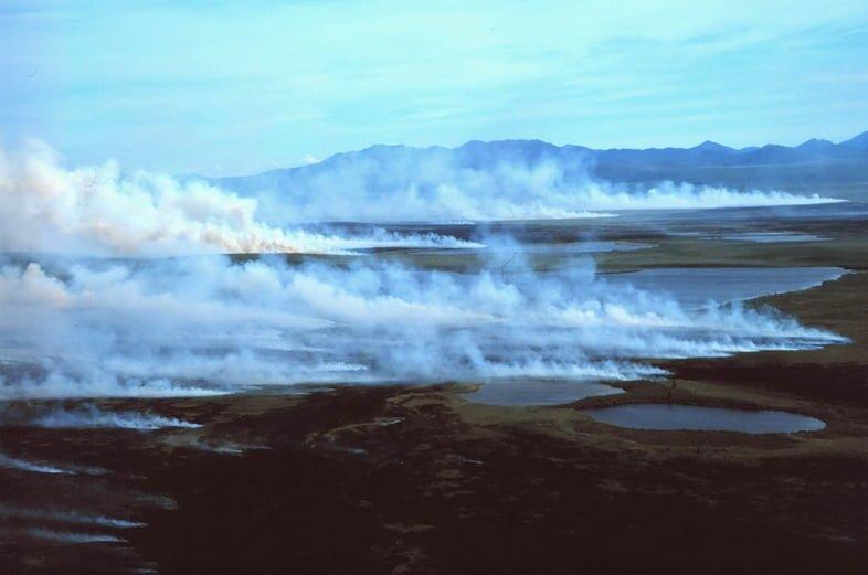 Лесной пожар в арктической тундре перед горами Бэрд