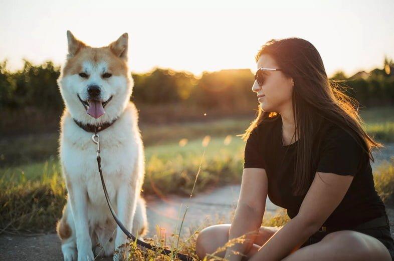 Красивая девушка с красивой собакой