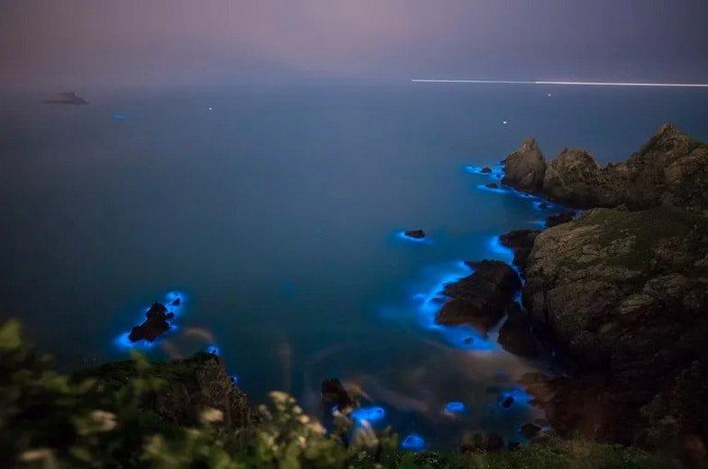 Биолюминесцентные водоросли Blue Tears (Голубые слезы) на Тайване