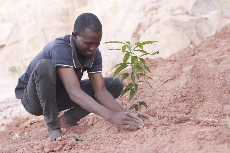 Мужчина сажает саженец дерева, чтобы бороться с опустыниванием