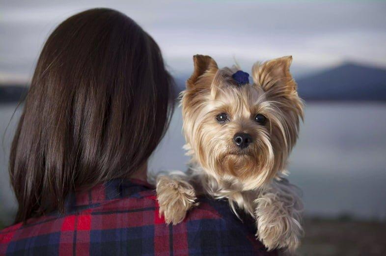 Женщина со щенком