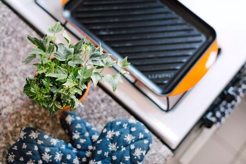 Плющ обыкновенный рядом с кухонной варежкой и плитой