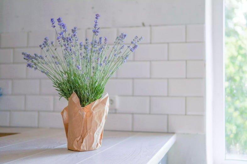 Интерьер кухни с цветком лаванды спереди