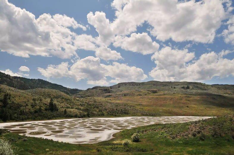 Минеральные отложения образуют круги на в основном испарившемся озере.