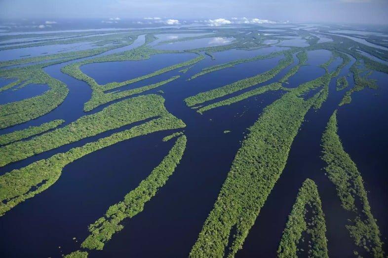 Вид с воздуха на реку Амазонку с высоким уровнем воды, создающим острова внутри реки.