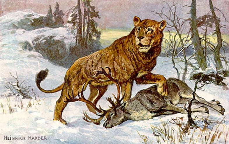 Европейский пещерный лев