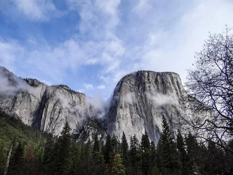 Серая гранитная башня возвышается над лесом в Йосемитской долине.