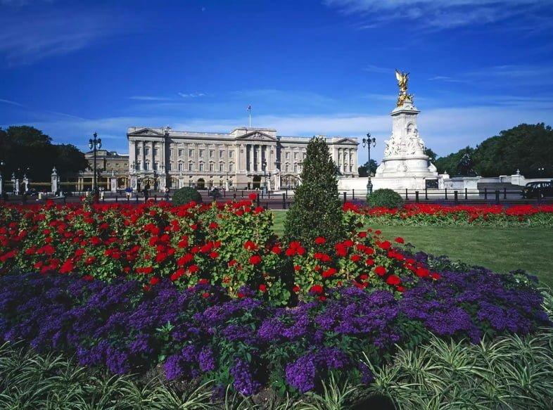 Ярко-голубое небо над Букингемским дворцом с зелеными лужайками, покрытыми красными и пурпурными цветами