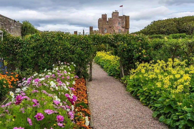 Гравийная пешеходная дорожка с розовыми, белыми и желтыми цветущими растениями по бокам, ведущая к арке, покрытой зелеными виноградными лозами, с замком мыса Мэй на расстоянии.