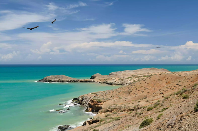Полуостров Гуахира недалеко от Кабо-де-ла-Вела с оранжевым песком, редкими кустарниками и бирюзовым Карибским морем