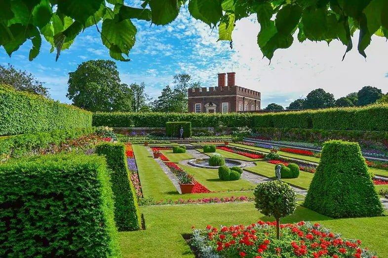 Классические английские сады под голубым небом, покрытые аккуратно подстриженными зелеными лужайками, скульптурными зелеными изгородями и клумбами красных цветов перед дворцом Хэмптон-корт.