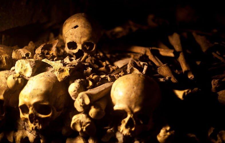 Куча костей и черепов