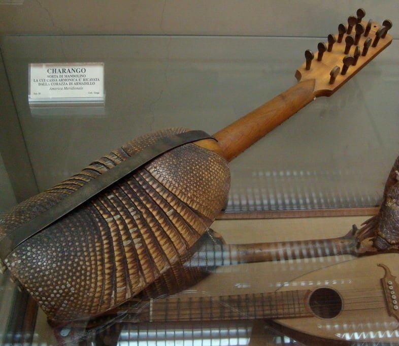 Чаранго, струнный музыкальный инструмент, в котором корпус сделан из панциря броненосца и прикреплен к грифу.