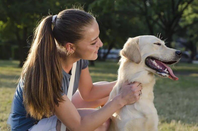 Собака отворачивается от женщины в парке