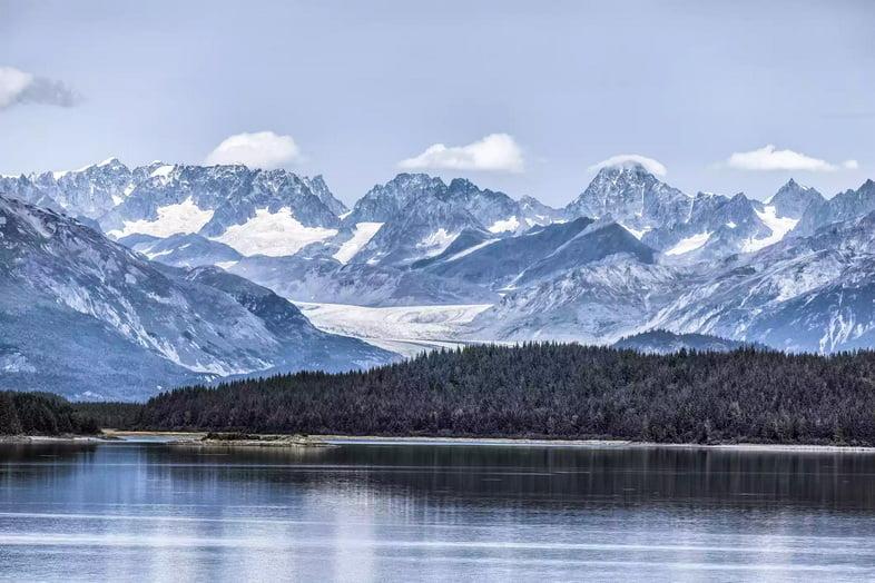 Прибрежные леса могут процветать в некоторых частях парка с отступлением ледников