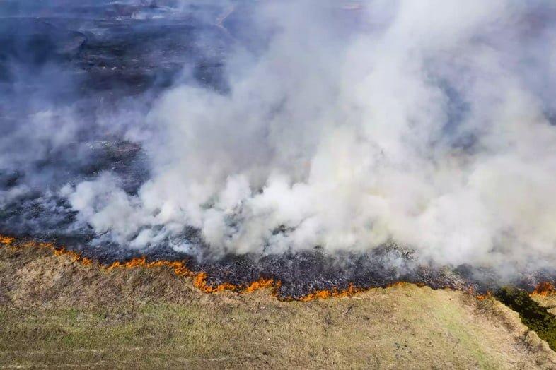 Вид с воздуха на пожар, вторгающийся в травянистую среду обитания