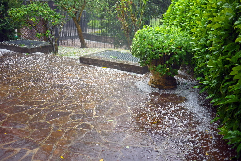Вид на благоустроенный задний двор во время ливня