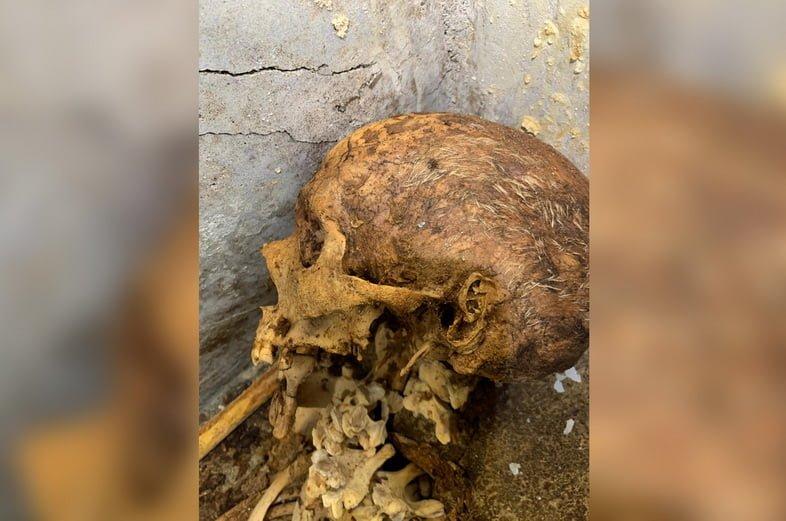 Близкий вид мумификации Марка Венерия Секундио